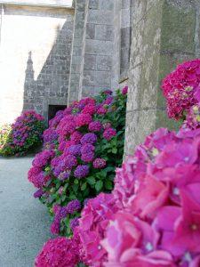 Fleurissement-autour-de-léglise